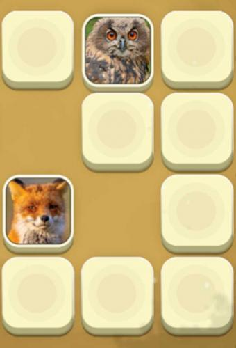 Zoo Match Game Screenshot